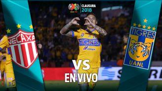 Edu Vargas celebra un gol con Tigres