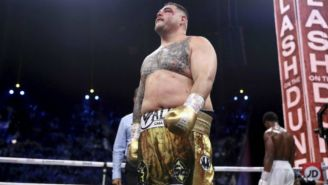 Andy Ruiz: Dillian Whyte volvió a llamar gordo al boxeador mexicano