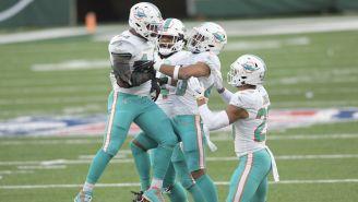 Dolphins en partido