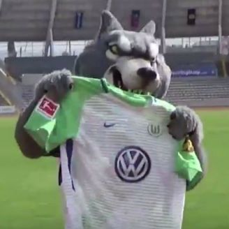 Mascota de Lobos BUAP con la playera del Wolfsburgo